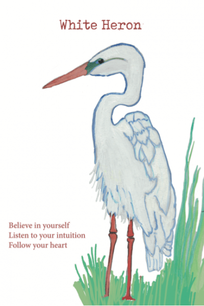 White Herron illustration